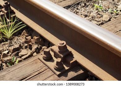 Rails fastened with screws to the railway sleeper. Wooden railway sleeper.