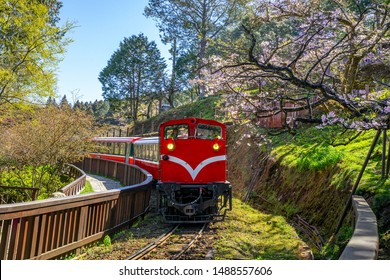 railway in alishan forest recreaction area in Taiwan