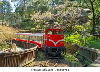 railway in alishan forest recreaction area