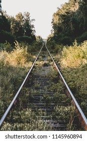 Railway to forest