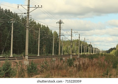 railway going into the distance through forest, summer landscape