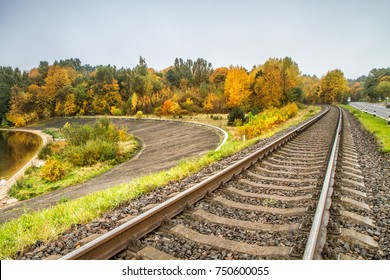 Railway leading to the forest
