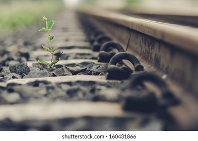 Railway and plant in the day in the countryside in Thailand