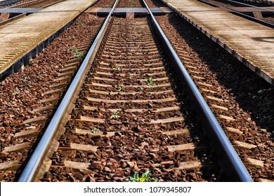 Railway road. Rails and cross ties.