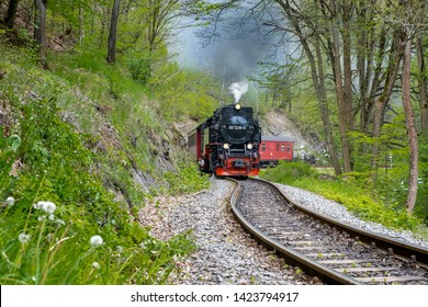 Railway  in the Selketal Harz narrow-gauge railways in the Harz Mountains