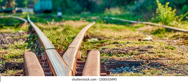 Railway sleepers and rails close-up. Rusty rails of an abandoned railway in forest
