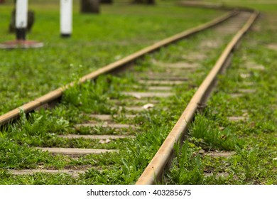Railway track, overgrown with grass.