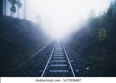 Railway tracks disappear into the mist in a dense dark forest