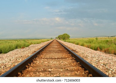 Railway tracks running through a field disappearing into the distance.
