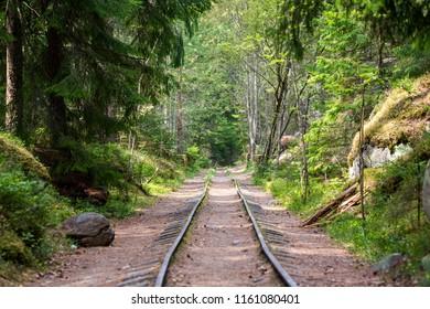 Railways at forest Naissaar, Estonia