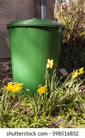 rain barrel in a garden for collecting of rain water