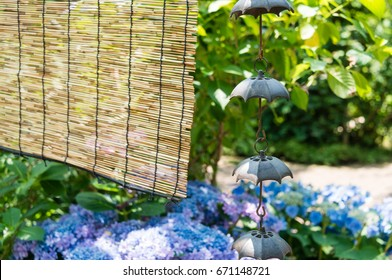 Rain chains and bamboo shade in a Japanese garden where blue hydrangeas are in bloom in summer.