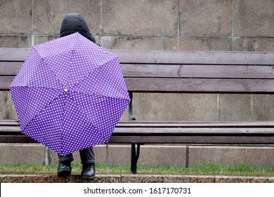 Rain in a city, woman with lilac umbrella and jacket with hood sitting on a wooden bench. Rainy weather, concept of loneliness, sadness, depression