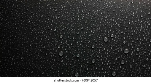 The rain drops on the black floor,Dew drops.