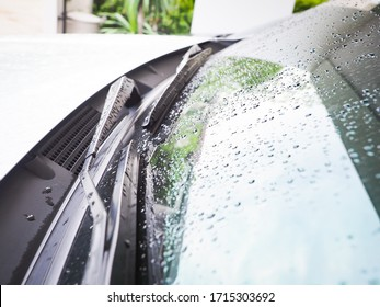The rain drops on the car annoyed me every time after washing the car.