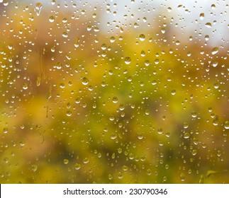Rain drops on window in the Autumn