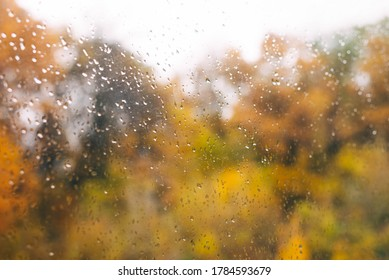 rain drops on the window, golden in the fall. rainy season. storm, hurricane, downpour.