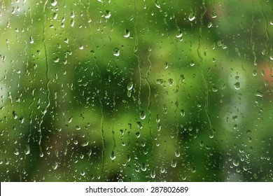 Rain drops on window with green tree in background , spring rainy day