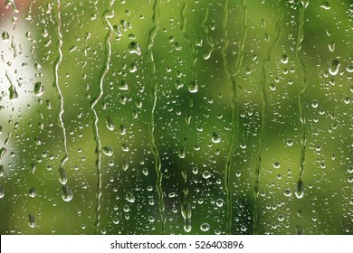 Rain drops on window with green tree in background