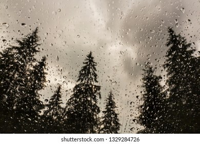 Rain drops on a window, with view to a fir tree forest, in the mountains, in summer