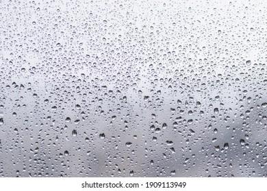 Rain drops in the window