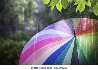 Rain falling and colorful umbrella in rainy day