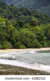 rain forest meets Coral Sea, beach scenery at Cape Tribulation