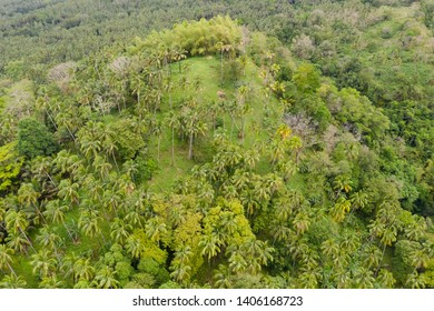 Rain forest on a hillside in sunny weather, top view. Landscape on the island Camiguin.