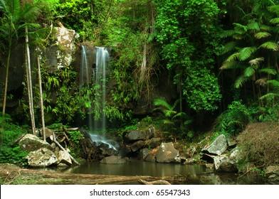 rain forest waterfall in Queensland, Australia