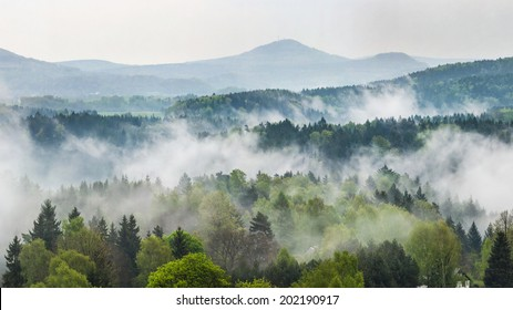 Rain forrest in the national park Bohemian Switzerland in Czech Republic with Lusatian mountains in background