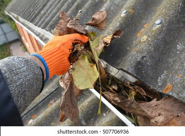 Rain Gutter Cleaning from Leaves in Autumn