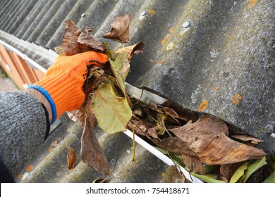 Rain Gutter Cleaning from Leaves in Autumn . Roof Gutter Cleaning Tips.