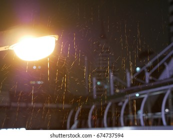 rain light  in the night time