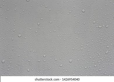 Rain on the hood, gray background car.