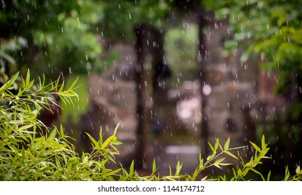 Rain in the park, against the background of the old stone arch
