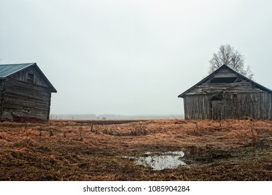 The rain pours over the old barn houses at the Northern Finland. The ground is very wet and field work is impossible yet.