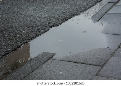 rain puddle, water drips and grey pavement