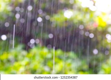 Rain, season of precipitation. Raindrops on a defocused spring rain background. Spring concept