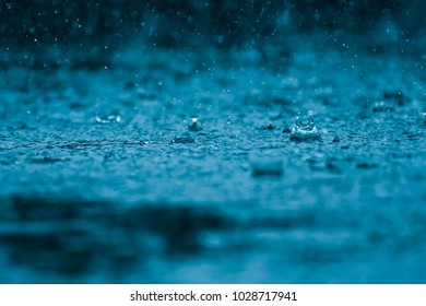 Water Drops On The Floor Images Stock Photos Vectors Shutterstock
