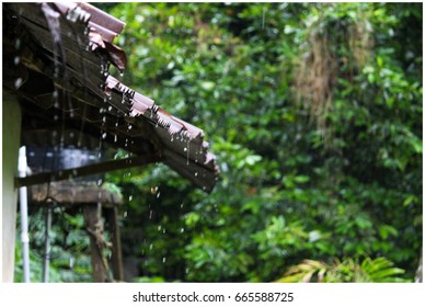 Rain water dropping from old building, a scene in Monsoon from Kerala, India