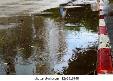 Rain, winter, Israel. Big puddle on asphalt, raindrops and circles in rainwater