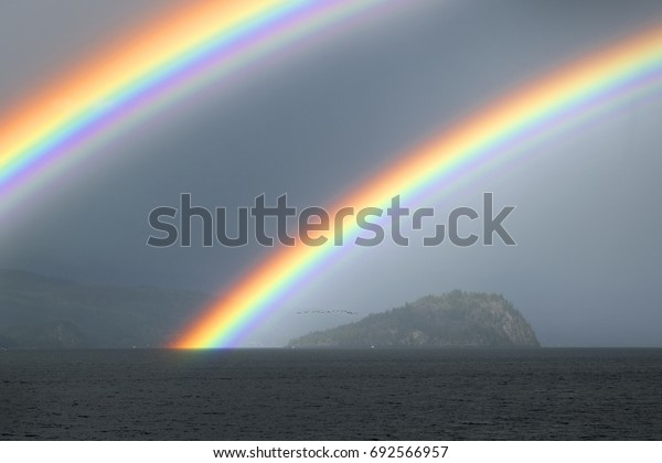 Rainbow above the lake and a flock of birds