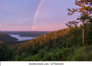 A rainbow arches over a towering pine in Broken Bow.