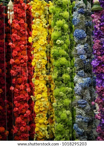 Rainbow Color Flowers Art Colorful Flower Stock Photo Edit Now