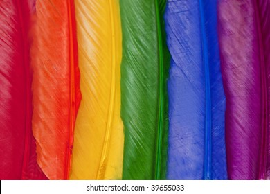 Rainbow Colored Feathers