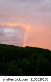 Rainbow column over a forest