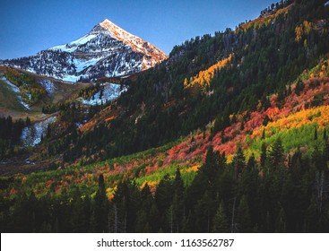 A rainbow of fall/autumn colors at the top of the Alpine Loop in American Fork Canyon, Utah County, USA.