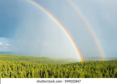 A rainbow forms over a forest after an afternoon thundershower