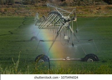 Rainbow in the mist of a wheel line, or traveling sprinkler, irrigation system for production of hay, central Oregon, USA.