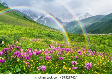 Rainbow in the mountains. Landscape with summer flowers. Sunny weather. Zemo Svaneti, Georgia, Caucasus